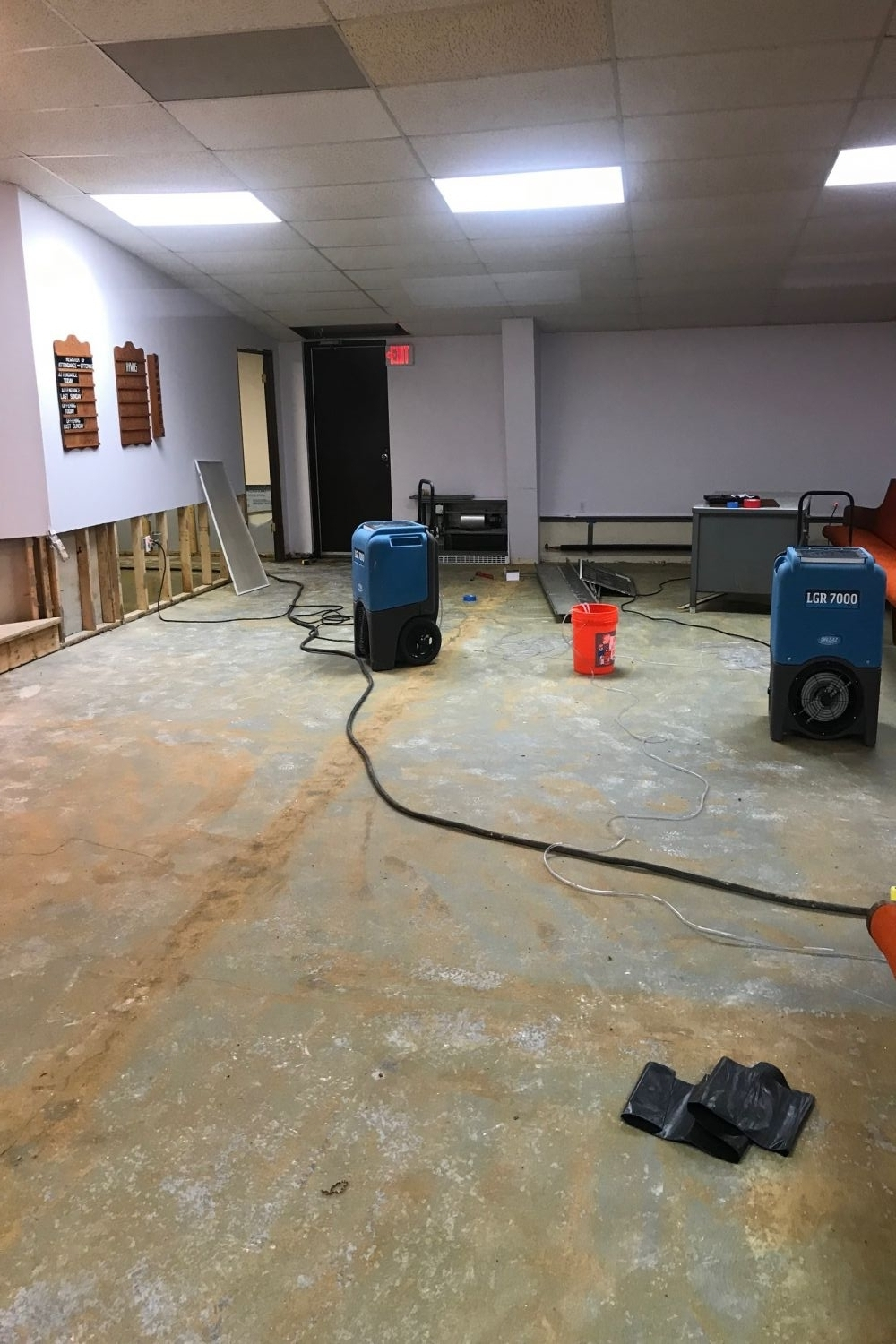 Schuhs cleaning services we clean it up carpet cleaning allergy oder services tile floor cleaning wood floor restoring construction cleaning move in move out cleaning janitorial maintenance services dailygadgetfo Gallery